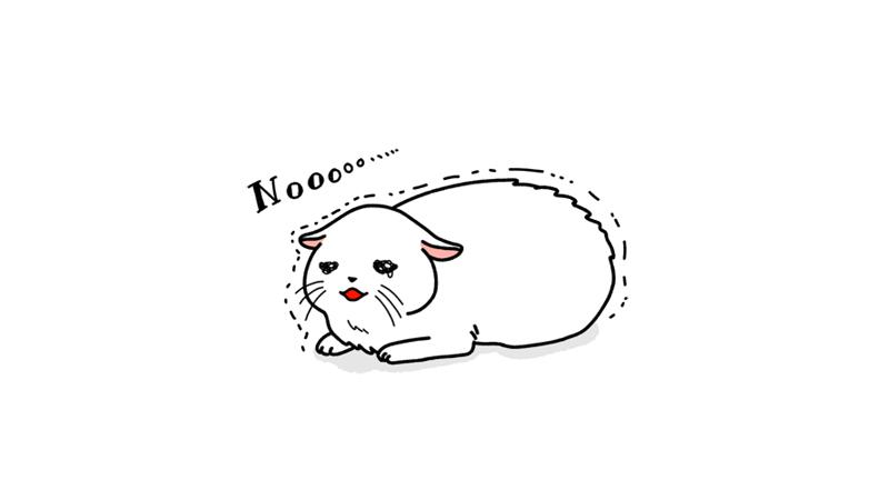 怖がる猫のイラストアイキャッチ