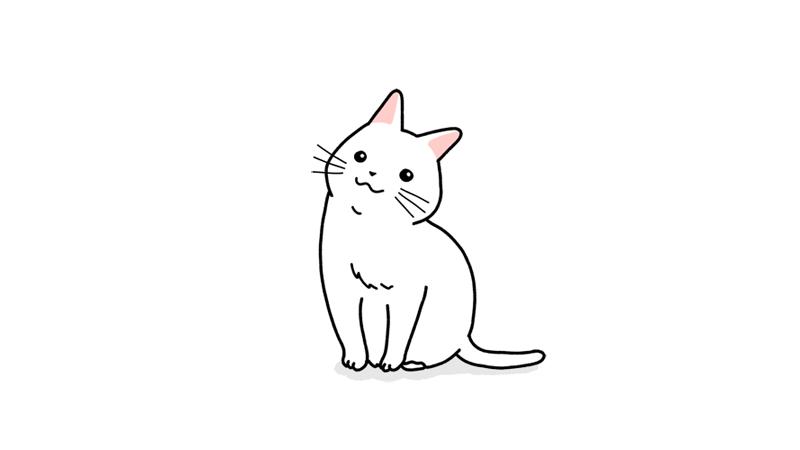 首を傾げる猫のイラストアイキャッチ