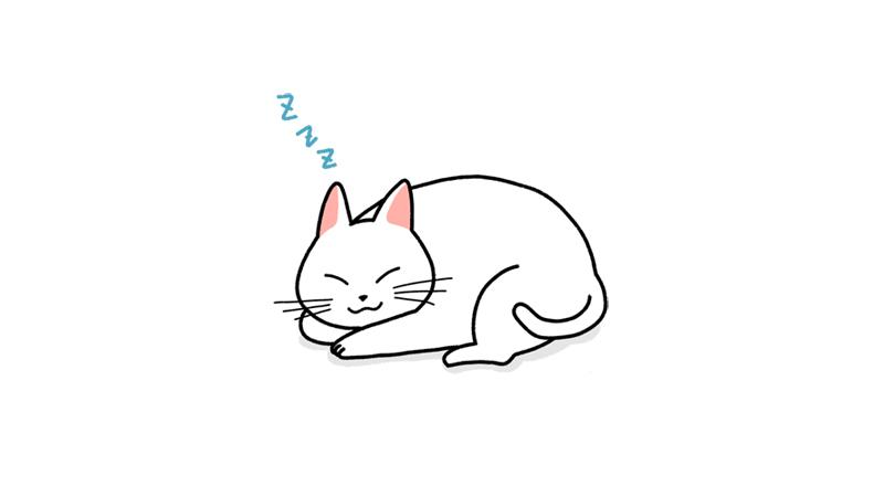 丸くなって寝る猫のイラストアイキャッチ