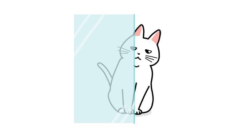 ガラス窓から顔半分を出して覗く猫のイラストアイキャッチ