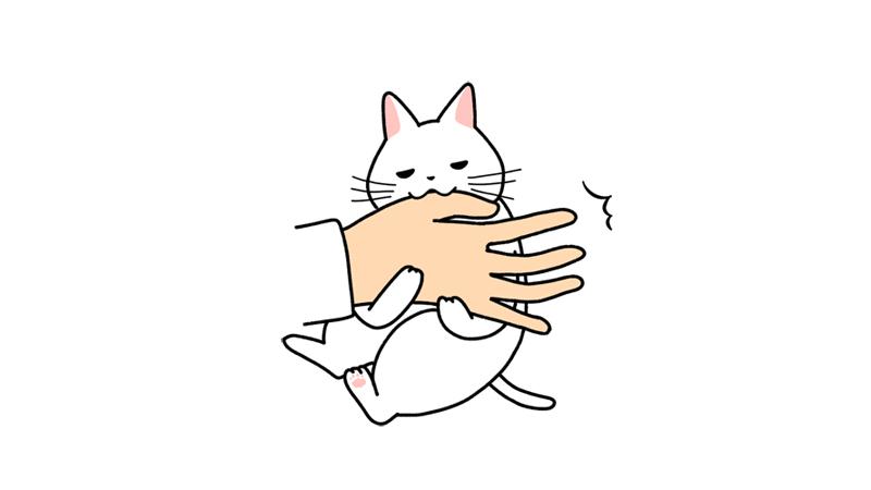 飼い主の手を噛む猫のイラスト