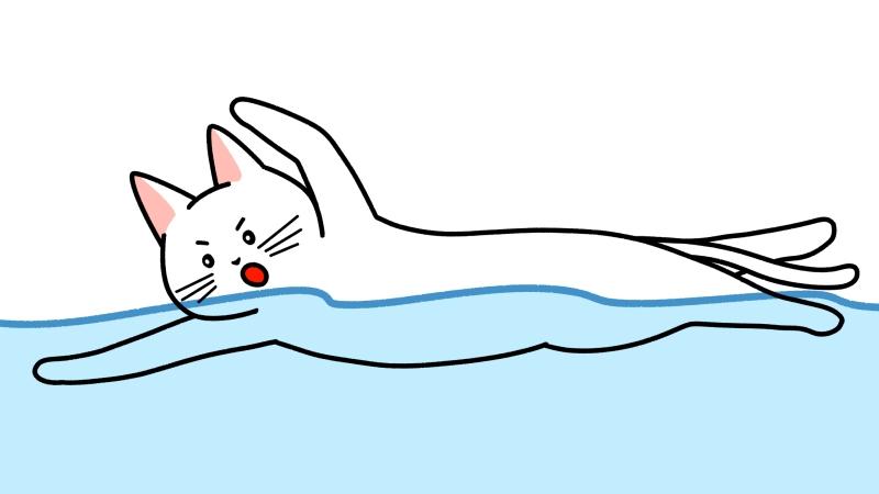 クロールで泳ぐ猫のイラスト