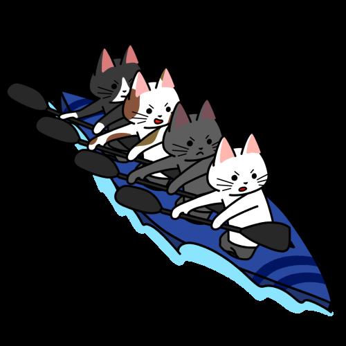 カヌー(スプリント・カヤックフォア)をする猫のイラスト
