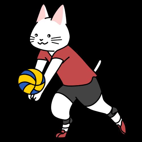バレーボールをする猫のイラスト(ユニフォームあり)