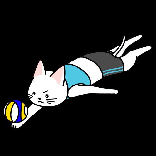 ビーチバレーをする猫のイラスト(ユニフォームあり)