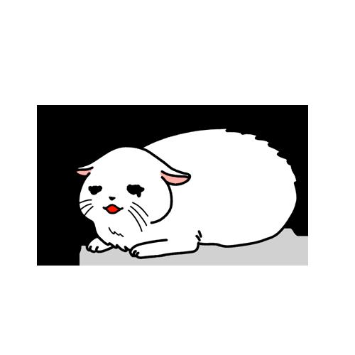 怖がる猫のイラスト